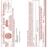 20x40 DIY Certificate